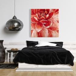 Canvas 36 x 36 - Red chrysanthemum