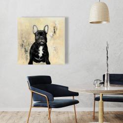 Canvas 36 x 36 - French bulldog
