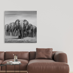 Canvas 36 x 36 - Herd of elephants