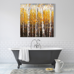 Canvas 36 x 36 - Birches by sunny day