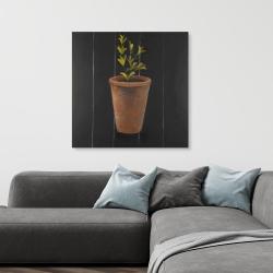 Canvas 36 x 36 - Plant of marjolaine