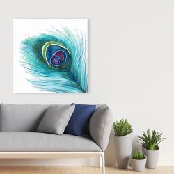 Canvas 36 x 36 - Peacock feather closeup