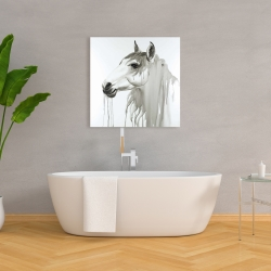 Canvas 36 x 36 - Beautiful white horse