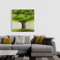 Canvas 36 x 36 - Big green tree