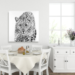 Canvas 36 x 36 - Leopard ready to attack