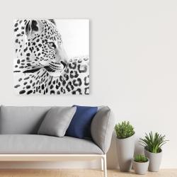 Canvas 36 x 36 - Beautiful leopard