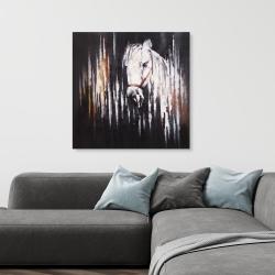 Canvas 36 x 36 - White horse in the dark