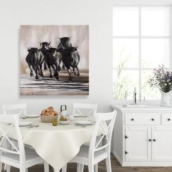 Canvas 36 x 36 - Group of running bulls