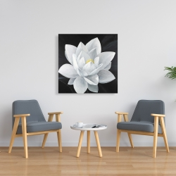 Canvas 36 x 36 - Overhead view of a lotus flower