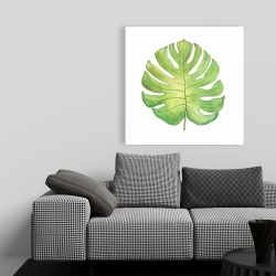 Canvas 36 x 36 - Tropical leaf