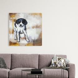 Canvas 36 x 36 - Curious puppy dog