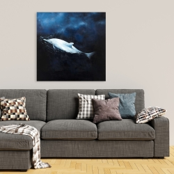 Canvas 36 x 36 - Swimming dolphin