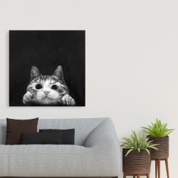 Canvas 36 x 36 - Curious cat