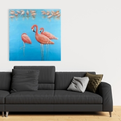 Canvas 36 x 36 - Group of flamingos