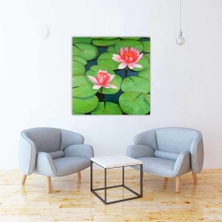 Canvas 36 x 36 - Lotus flowers in a swamp