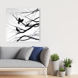 Canvas 36 x 36 - Birds and branches silhouette