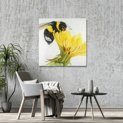 Canvas 36 x 36 - Little bumblebee on a dandelion