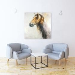 Canvas 36 x 36 - Wild horse