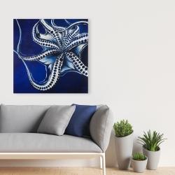 Canvas 36 x 36 - Dancing octopus