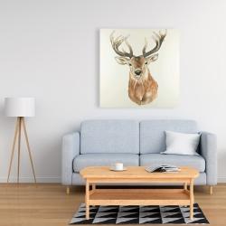 Canvas 36 x 36 - Front deer portrait