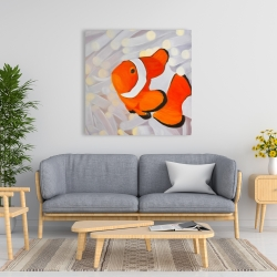 Canvas 36 x 36 - Clownfish