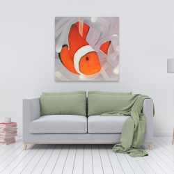 Canvas 36 x 36 - Clownfish under the sea