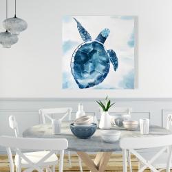 Canvas 36 x 36 - Blue turtle