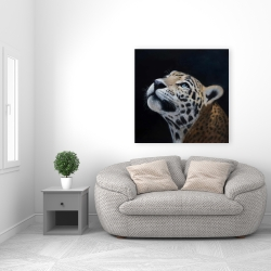 Canvas 36 x 36 - Realistic leopard face