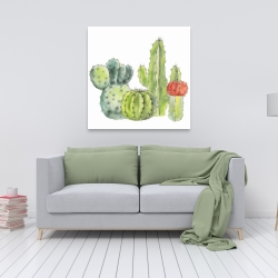 Canvas 36 x 36 - Gathering of small cactus