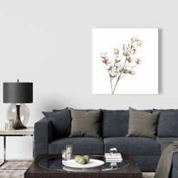 Canvas 36 x 36 - A branch of cotton flowers