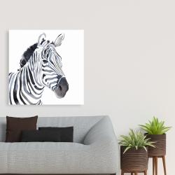 Canvas 36 x 36 - Watercolor zebra