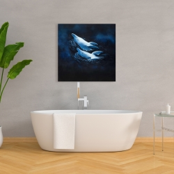 Canvas 36 x 36 - Two swimming dolphins