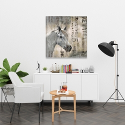 Canvas 36 x 36 - Rustic white horse