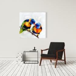 Canvas 36 x 36 - Couple of parrots