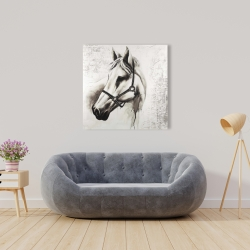Canvas 36 x 36 - Flicka the white horse