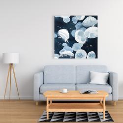 Canvas 36 x 36 - Jellyfishs