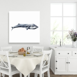 Canvas 36 x 36 - Watercolor whale