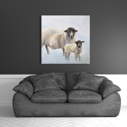 Canvas 36 x 36 - Sheep and its baby