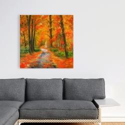 Canvas 36 x 36 - Autumn trail