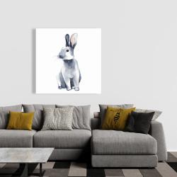 Canvas 36 x 36 - Gray curious rabbit