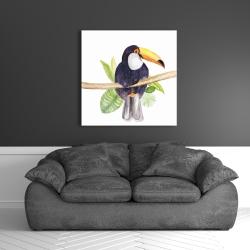 Canvas 36 x 36 - Toucan