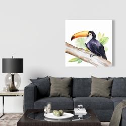 Canvas 36 x 36 - Toucan perched