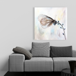Canvas 36 x 36 - Butterfly on blue flowers