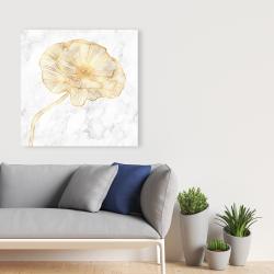 Canvas 36 x 36 - Golden poppy flower