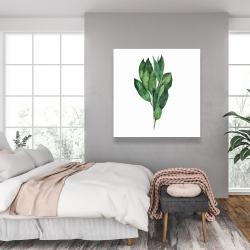 Canvas 36 x 36 - Bay leaves bundle