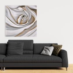 Canvas 36 x 36 - White rose closeup