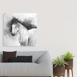 Canvas 36 x 36 - Domino horse