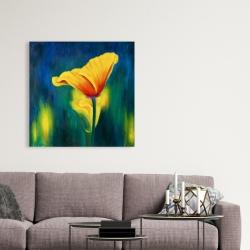Canvas 36 x 36 - Superb contrast flowers