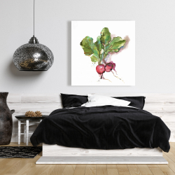 Canvas 36 x 36 - Watercolor radish