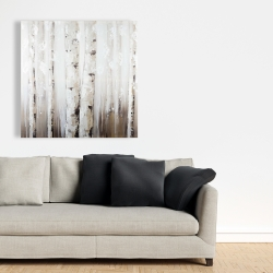 Canvas 36 x 36 - Abstract white birches